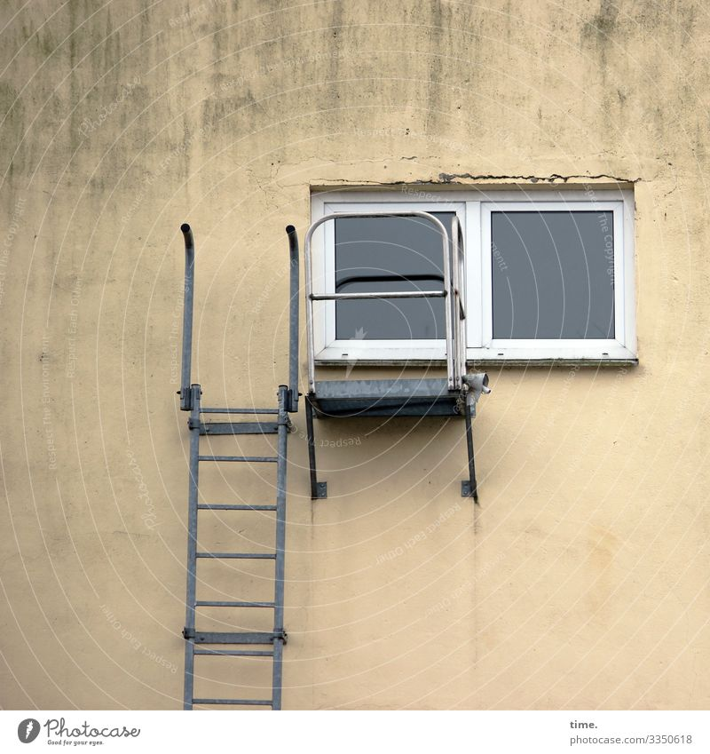 Access requirement Ladder Window sales Wall (barrier) Wall (building) House (Residential Structure) Gray (horse) Trashy Whimsical Entrance Way out Metal wobbly