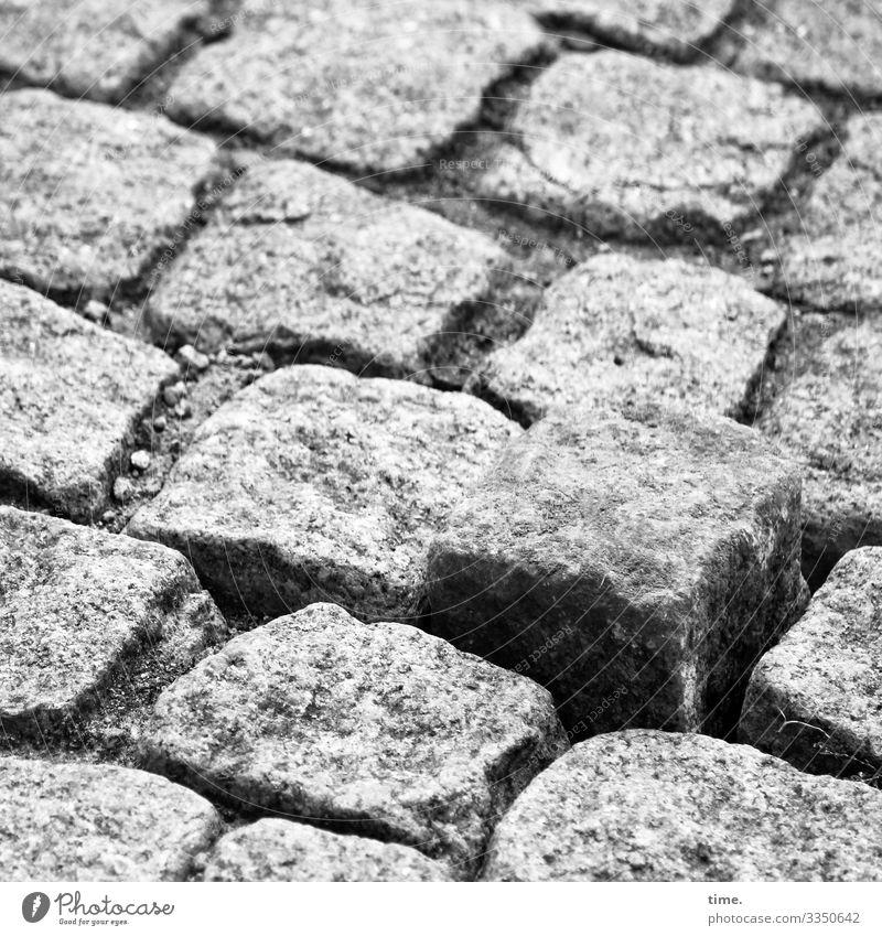 lifted off   hard times Transport Passenger traffic Street Lanes & trails Cobblestones Stumble Stumbling block Stone Watchfulness Life Surprise Nerviness