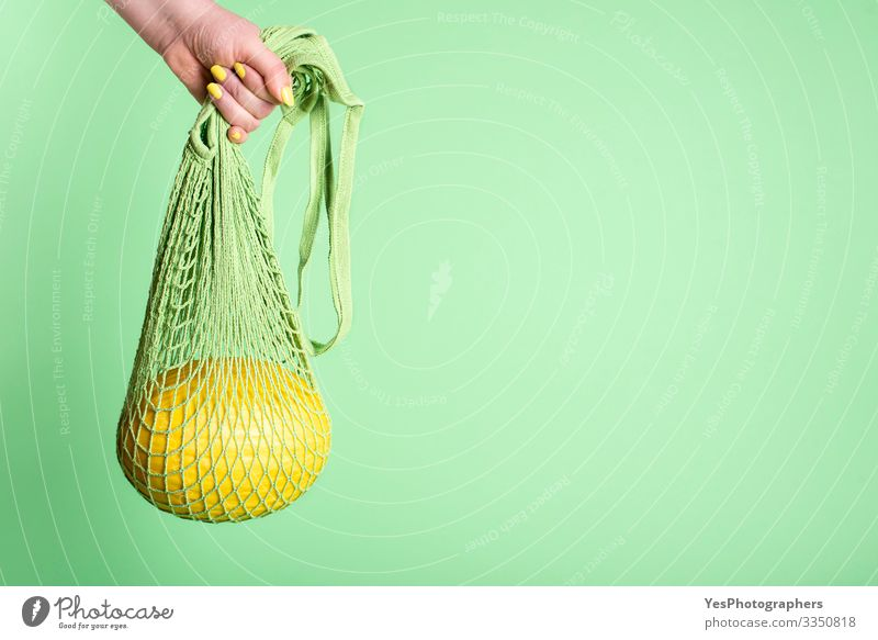 Honeydew melon hanging in mesh shopping bag Fruit Dessert Nutrition Breakfast Organic produce Shopping Healthy Eating Green buying fruits colorful cucurbitaceae