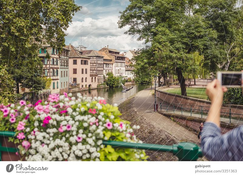 City trip Strasbourg 3/5 Nature Sky Summer Weather Beautiful weather Flower Park France Europe Town Downtown Old town House (Residential Structure) Bridge