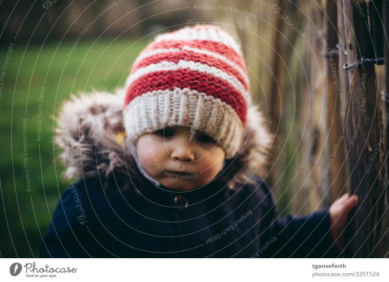 Toddler in autumn Human being Masculine Child Boy (child) Infancy 1 1 - 3 years Observe Study Dream Authentic Friendliness Happiness Healthy Happy Good pretty