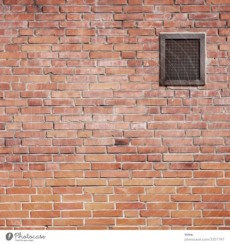 sieved air Building Wall (building) Stone Wall (barrier) Architecture Design Facade Brick brick wall Seam stonewalled Arrangement Offset stable accurate opaque