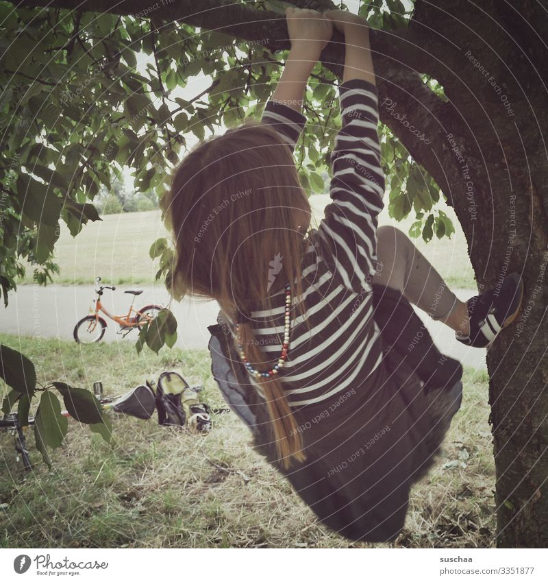 climbed a tree, ate cherries. Child Girl Tree Cherry tree Climbing tree-climb Tree trunk Branch Leaf Braids To hold on Bicycle Summer Exterior shot Infancy