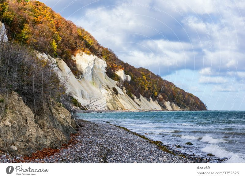 Baltic Sea coast on the island of Moen in Denmark Relaxation Vacation & Travel Tourism Beach Ocean Waves Nature Landscape Water Clouds Autumn Tree Forest Rock