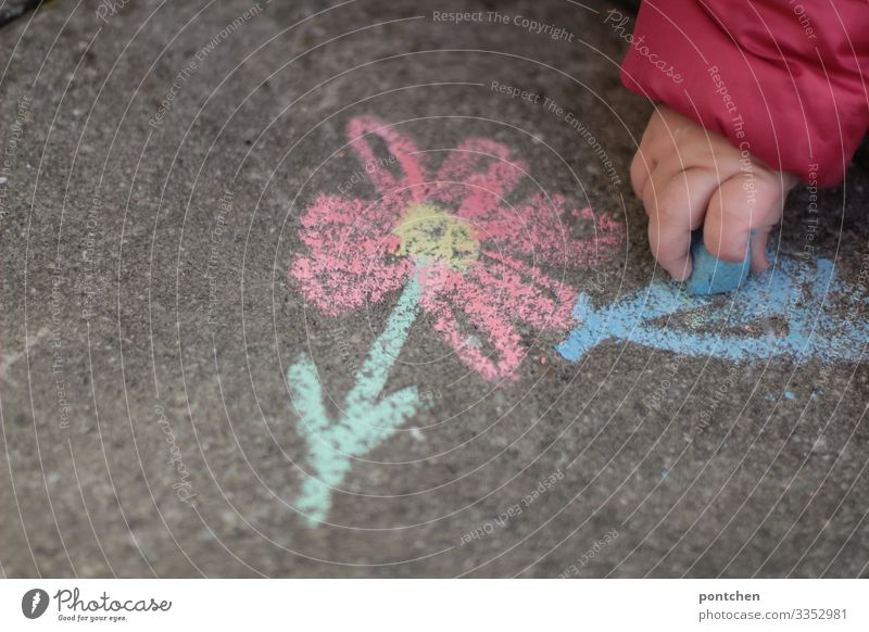 Child's hand paints flower with street chalk on asphalt Leisure and hobbies Playing Draw Chalk Cellphone Toddler Infancy Painting (action, artwork) Flower Blue