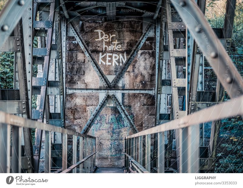 Under a railway bridge. Industry Deserted Bridge Manmade structures Rail transport Railroad Work and employment Force Adventure Steel bridge Iron blue