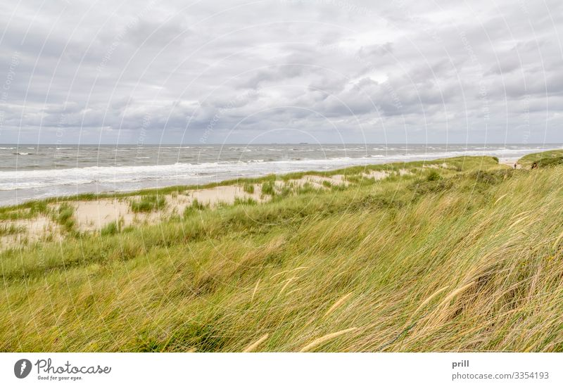 coastal scenery at Spiekeroog Relaxation Summer Beach Ocean Island Waves Nature Landscape Sand Water Coast North Sea Authentic East Frisland Friesland district