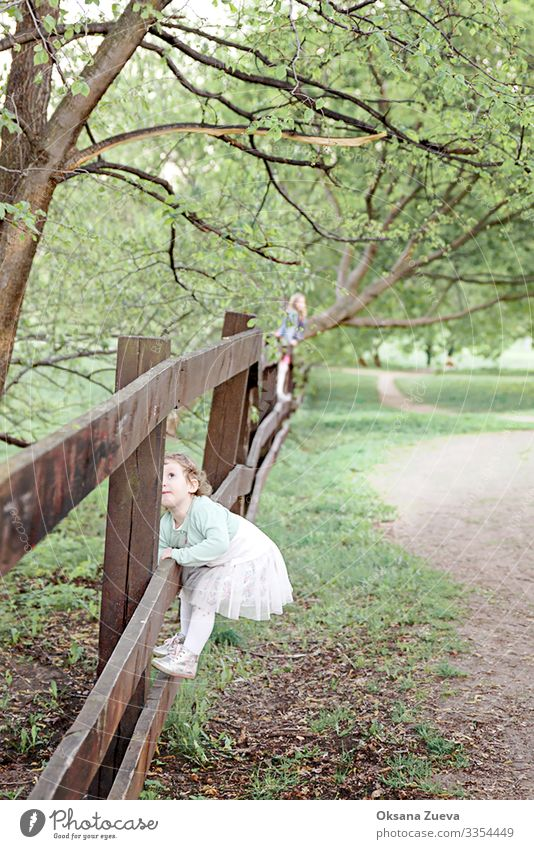 Girls climb a fence in the spring in the garden.The concept of childhood, cheerfulness, carefree. Summer Spring Grass Fence Arm Garden Warmth Relaxation Tree