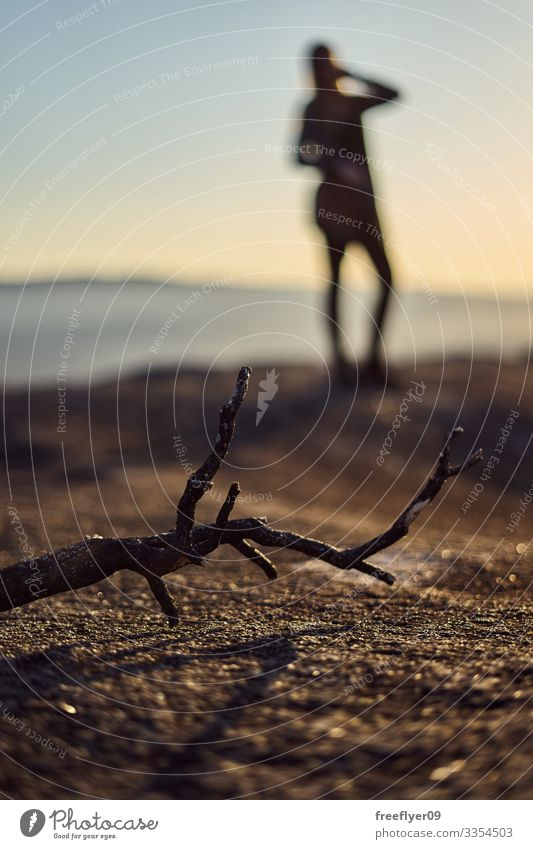 Foreground of a dead stick, with a defocused bacground of a woman posing background foreground vertical nature outdoors copy space top copy-space shallow depth