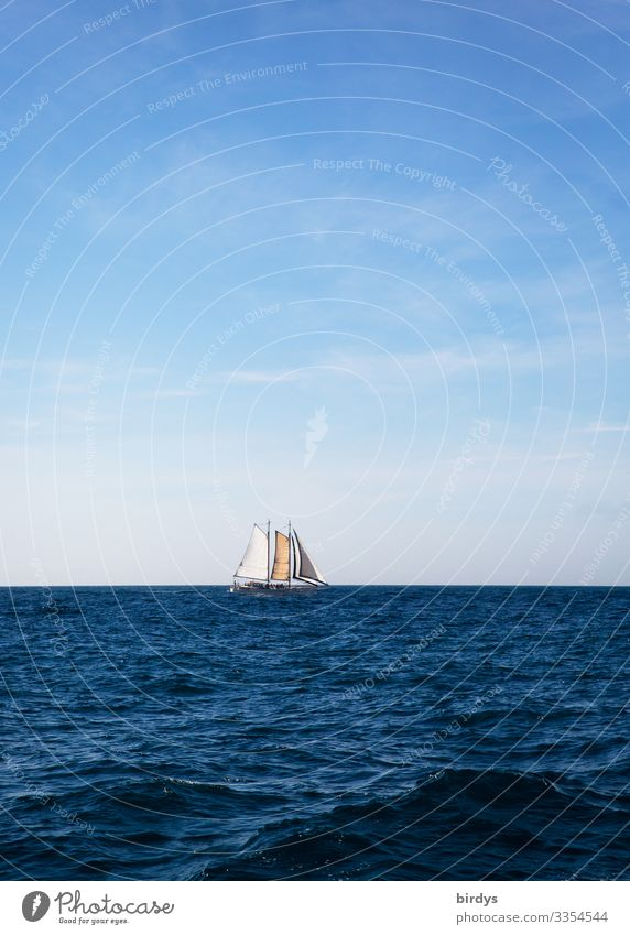 Sailboat, sailing ship Leisure and hobbies Vacation & Travel Tourism Far-off places Summer Ocean Waves Sailing vacation Sky Horizon Climate change