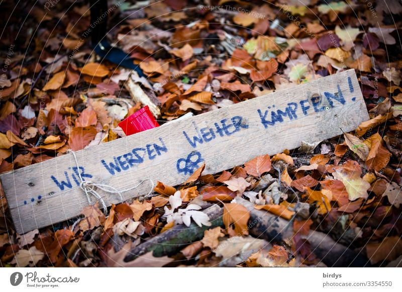 declaration of war Nature Autumn Climate change Autumn leaves Woodground Sign Characters Signage Warning sign Fight Argument Authentic Threat Simple