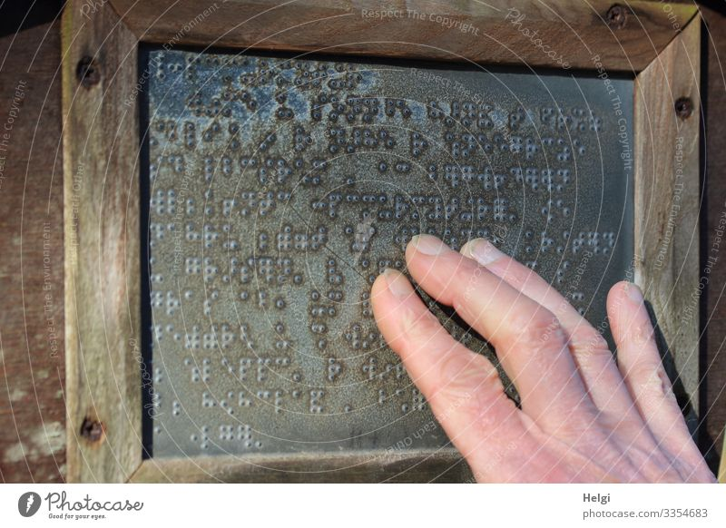 A person's fingers feel Braille on a sign Hand Fingers Wood Metal Characters Signs and labeling Touch Reading Authentic Exceptional Sharp-edged Brown Gray Pink