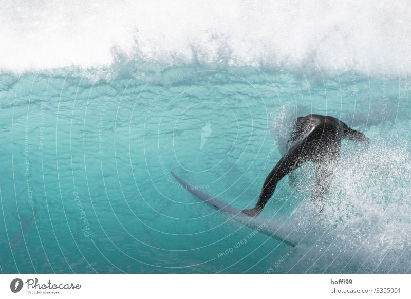 Unexpected turn Surfing Surfer Surfboard Human being 1 18 - 30 years Youth (Young adults) Adults Water Beautiful weather Waves Ocean Swimming & Bathing Dive