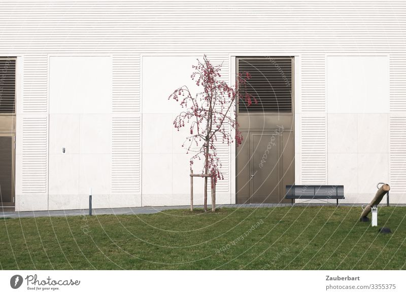 Instead of garden Garden Tree Grass Lawn Facade Door Bench Seesaw Playing Sharp-edged Town Green White Disciplined Orderliness Cleanliness Loneliness Modern