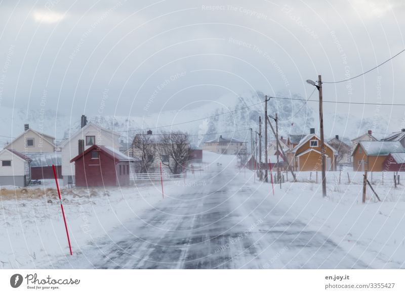 winter weather Vacation & Travel Trip Winter Snow Winter vacation Environment Landscape Sky Clouds Bad weather Wind Ice Frost Snowcapped peak Eggum Norway