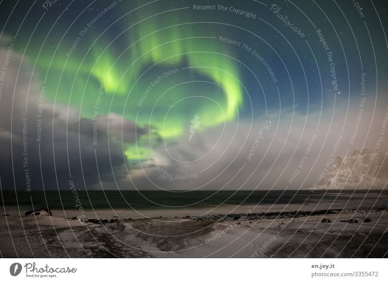 Love you Vacation & Travel Ocean Winter Winter vacation Nature Landscape Sky Storm clouds Night sky Stars Horizon Ice Frost Snow Aurora Borealis Mountain Beach