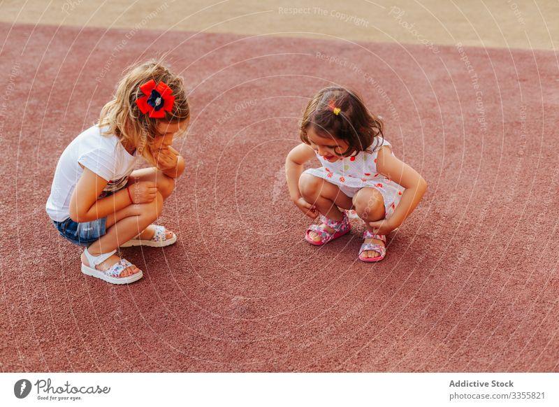 Little girls examining rubber ground friend playground together examine weekend fun rest kid child sit haunches friendship childhood relax lifestyle check