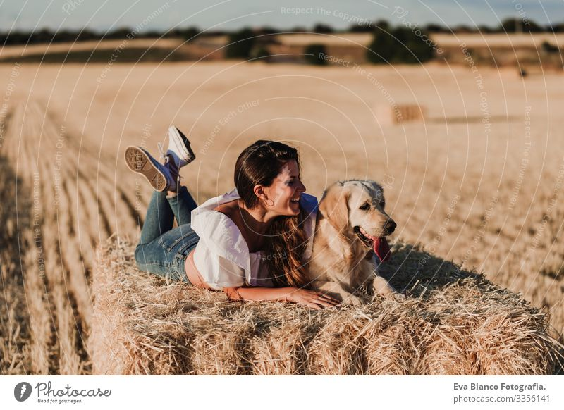 young beautiful woman walking with her golden retriever dog on a yellow field at sunset. Nature and lifestyle outdoors Summer Beautiful Fashion