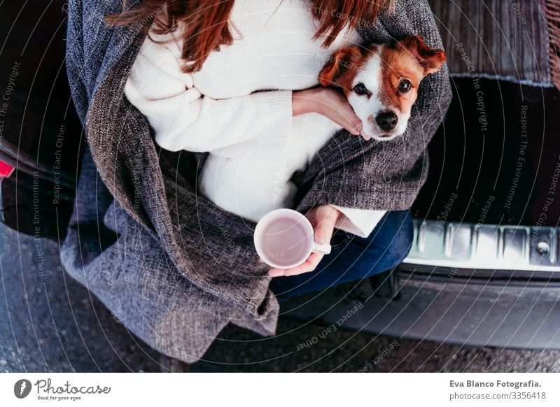 woman and cute jack russell dog enjoying outdoors at the mountain into the car. Travel concept. winter season. top view Woman Dog Car Snow Mountain