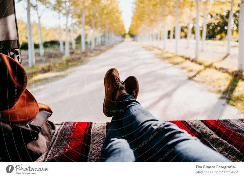 cute jack russell dog and woman legs relaxing in a van. travel concept. selective focus on trees Woman Resting Van Legs Unrecognizable Tree Camping