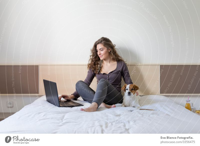 beautiful young woman sitting on bed with her cute small dog besides. She is working on laptop and smiling. Home, indoors and lifestyle Cozy Small Fatigue mood