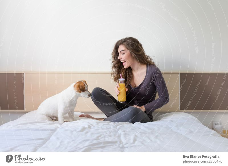 beautiful young woman lying on bed with her cute small dog besides. Home, indoors and lifestyle. She is drinking orange juice. Cozy Small mood cuddle Friendship