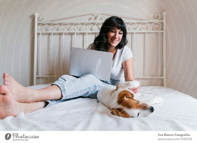 young caucasian woman on bed working on laptop. Cute small dog lying besides. Love for animals and technology concept. Lifestyle indoors Woman