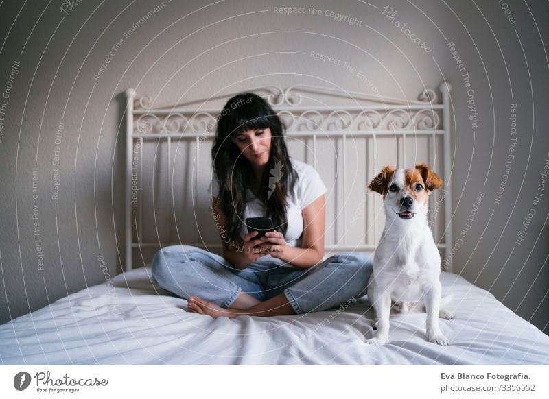 young caucasian woman on bed using mobile phone. Cute small dog lying besides. Love for animals and technology concept. Lifestyle indoors Girl Joy Lovely