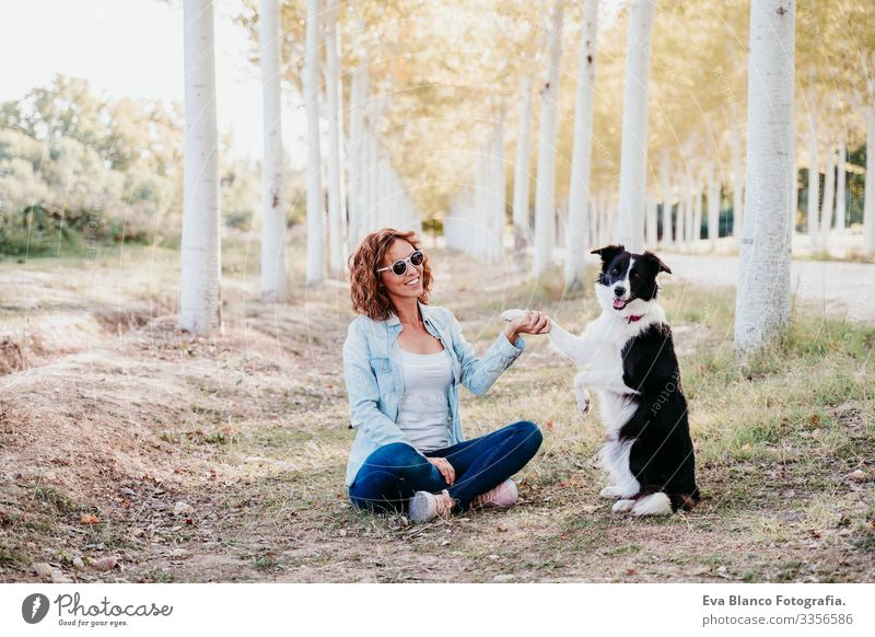 woman and beautiful border collie dog sitting in a path of trees outdoors. Woman owner Dog Pet Tree way Lanes & trails intelligent Beautiful