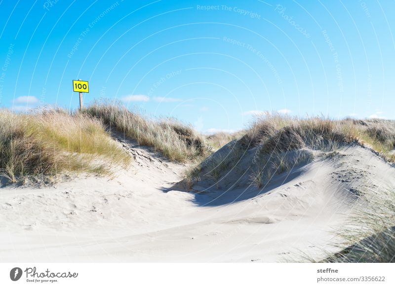 100 again Nature Landscape Cloudless sky Beautiful weather Maritime Dune Beach dune Marram grass Signs and labeling Beach vacation Oregon Colour photo
