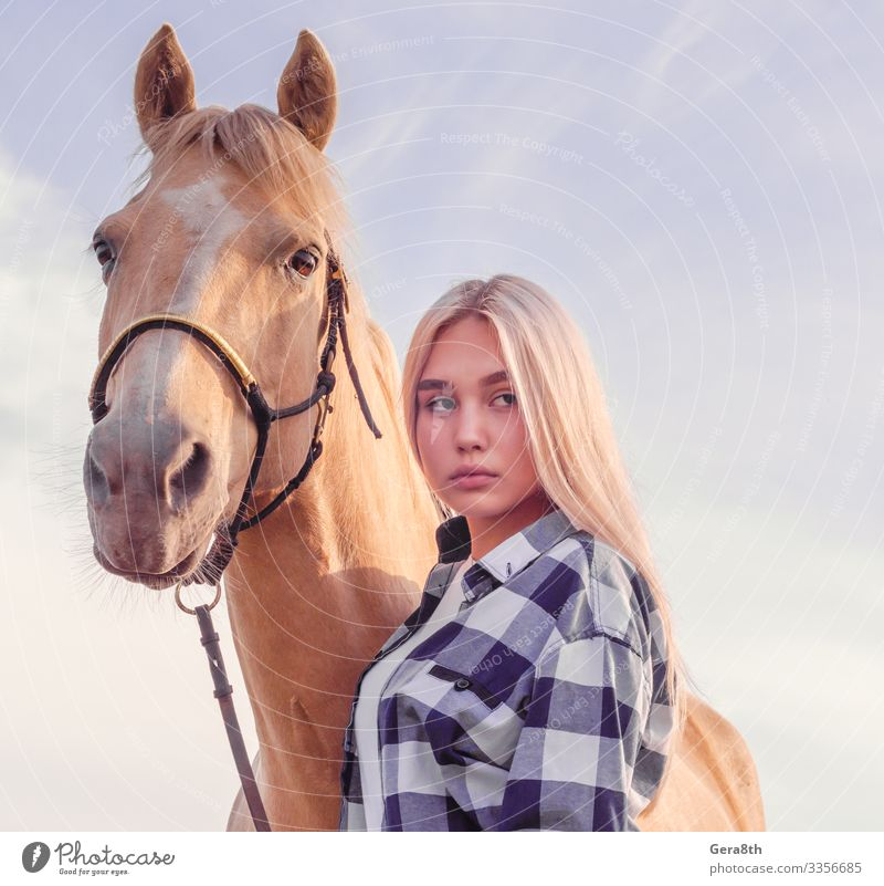 portrait of a young blonde girl with a beige horse on the ranch Style Beautiful Face Summer Woman Adults Friendship Animal Sky Village Fur coat Blonde Horse