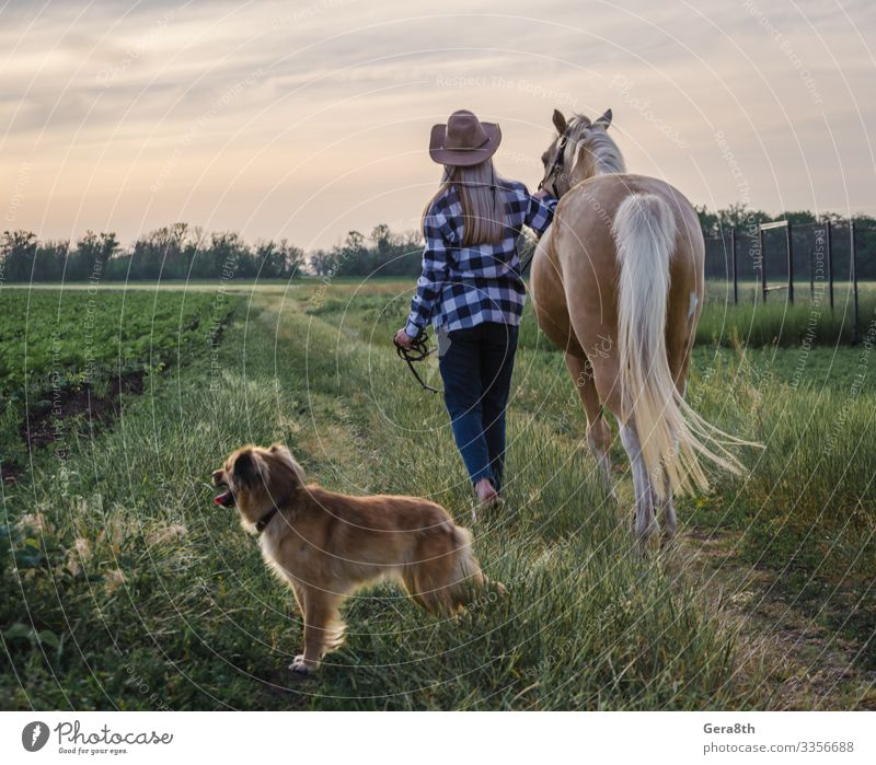 young blonde girl in a hat and a plaid shirt walks with a horse Style Summer Woman Adults Friendship Nature Landscape Plant Animal Sky Clouds Warmth Grass