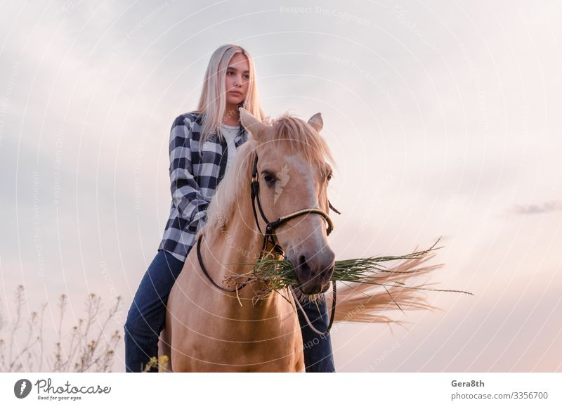 young blonde girl sits on a horse at the ranch Style Face Summer Woman Adults Friendship Nature Animal Sky Village Clothing Shirt Jeans Blonde Horse Sit Natural