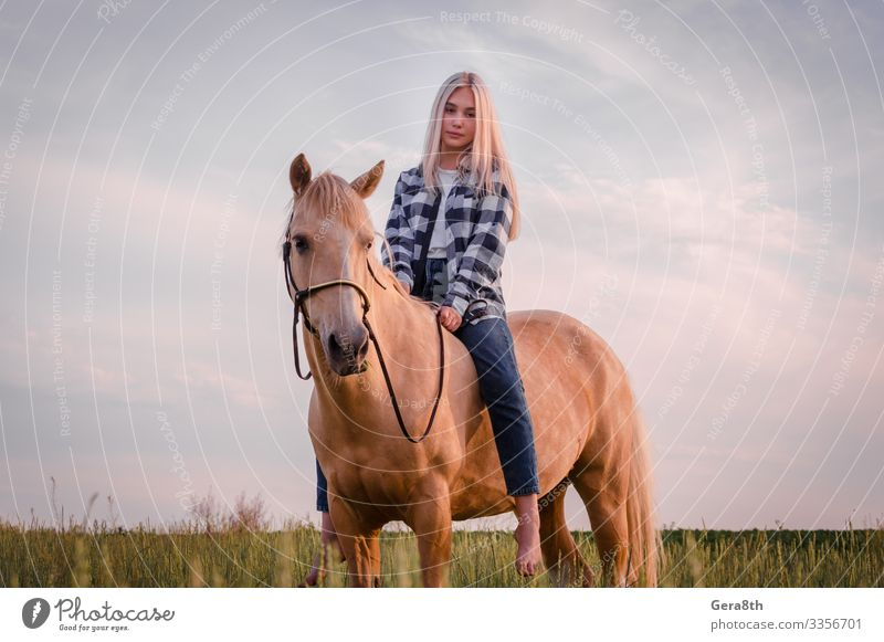 young blonde girl dressed in blue jeans sits on a horse Style Face Summer Woman Adults Friendship Nature Animal Sky Meadow Village Clothing Shirt Jeans Blonde