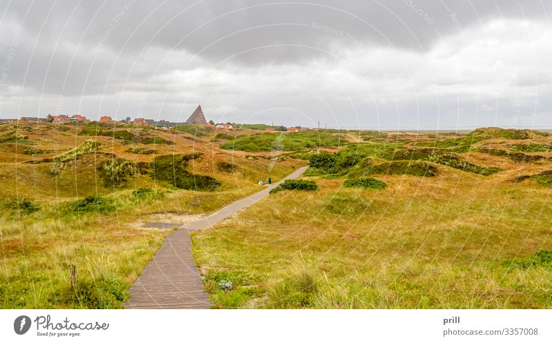 Spiekeroog in East Frisia Summer Island Landscape Plant Bushes Coast Village Lanes & trails Authentic East Frisland Friesland district Germany Northern Germany