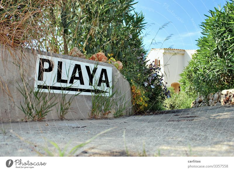 vamos ..... Majorca Balearic Islands Spain Vacation & Travel Tourism Beach Ballermann Binge tourism Signs and labeling Signage Direction Lanes & trails Summer