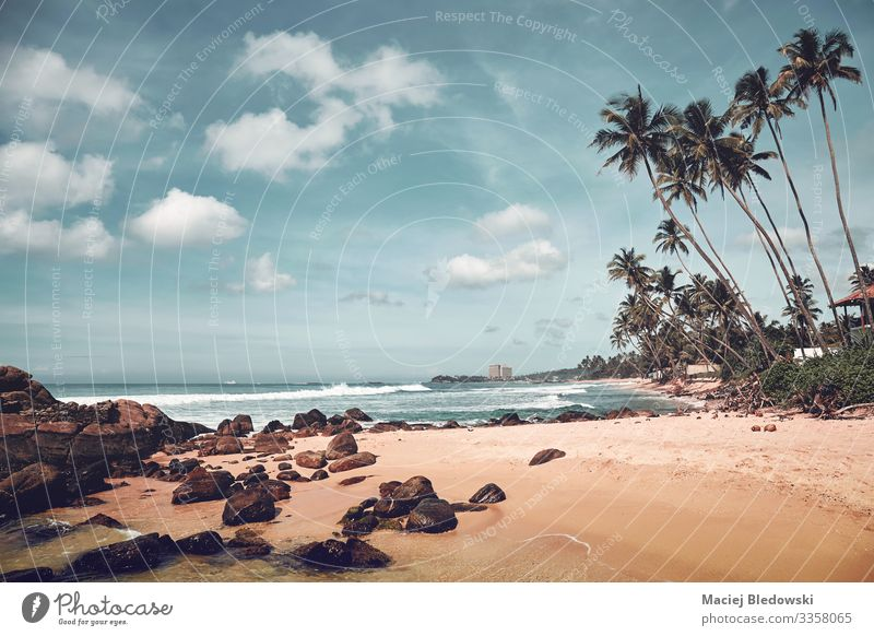 Tropical beach with rocks and coconut palm trees, Sri Lanka. Exotic Beautiful Relaxation Vacation & Travel Tourism Trip Adventure Freedom Summer Summer vacation