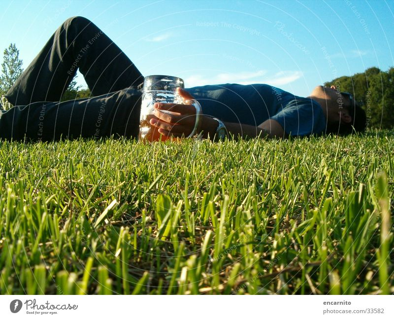 hangover Park Meadow Green Man Masculine Beer Drinking Alcohol-fueled Beer mug Sleep Lawn Garden Scale Lie Relaxation
