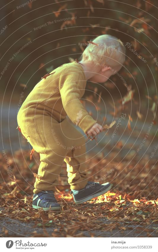 Joy of Autumn Parenting Education Kindergarten Child Study Human being Toddler Boy (child) Life 1 1 - 3 years 3 - 8 years Infancy Environment Nature Leaf Garden
