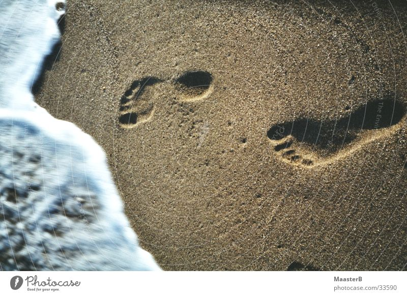 Carribean Footprints Water Ocean Beach Feet Sand Coast Tracks Transience Imprint