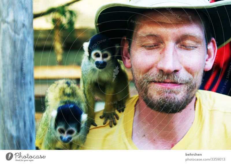 taken literally | laust der monkey! Animal portrait Blur Sunlight Contrast Light Day Close-up Colour photo Funny South Africa Cute Curiosity Brash Exotic