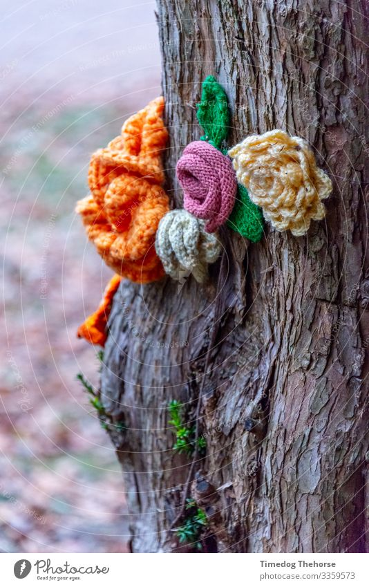Knitted Flower Plant Tree Relaxation Love Blossom Decoration Growth Soft Peace Cloth Botany Tree bark Wool Consistency Hippie