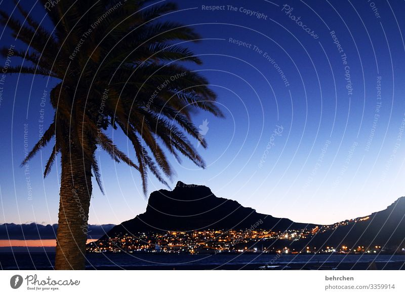 when night falls in paradise Sun Optimism Hope Gorgeous beautifully Hout Bay Twilight Sunset Contrast Light Exterior shot Colour photo Cape Town Wanderlust