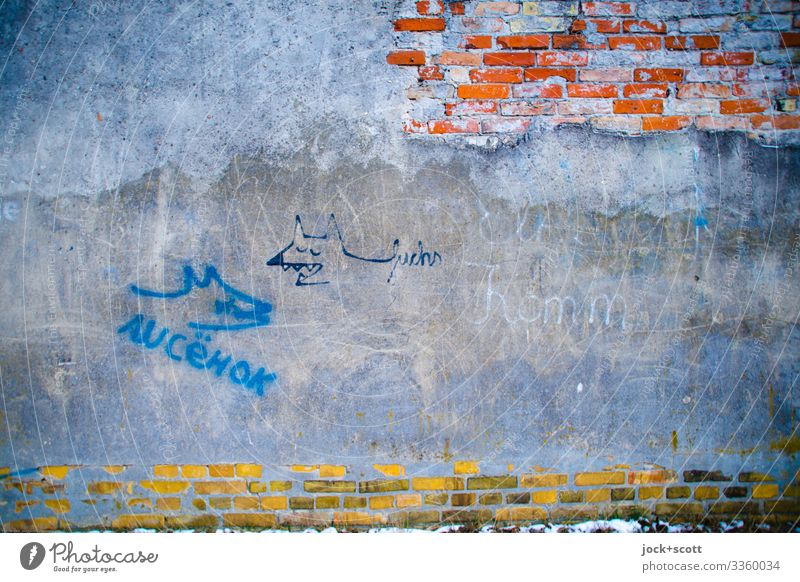 Master Reineke Lifestyle Subculture Street art Kreuzberg Wall (barrier) Wall (building) Brick wall Plaster Characters Fox Old Authentic Exceptional Firm