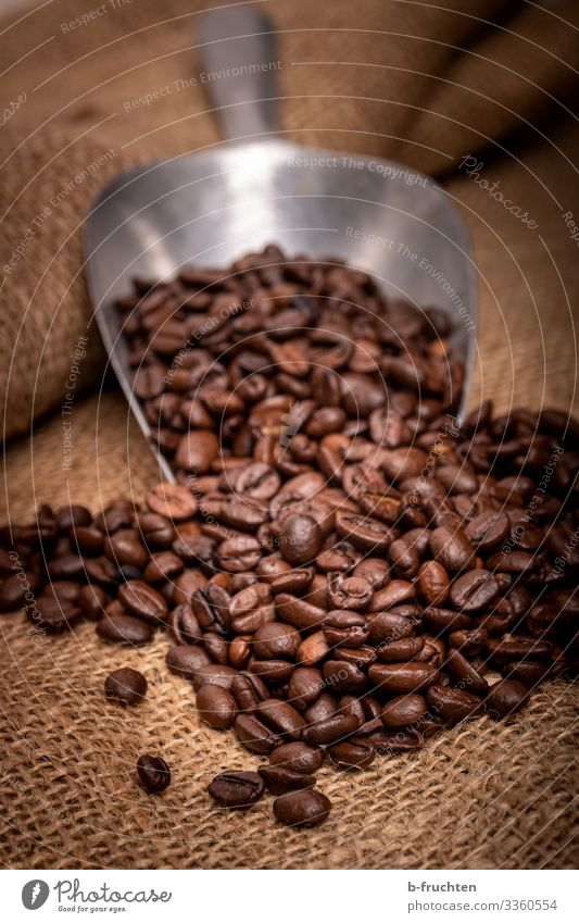 coffee beans Food Nutrition Breakfast Hot drink Coffee Espresso Healthy Eating Packaging Select Utilize To enjoy Coffee bean Shovel toast Jute sack Colour photo