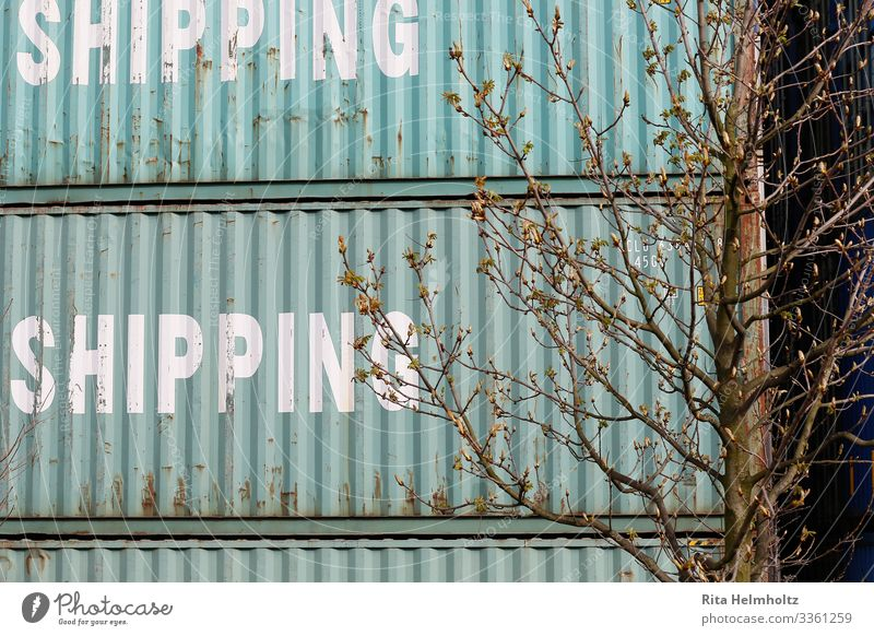container Logistics Container Sharp-edged Turquoise Business Services Growth Change Colour photo Exterior shot