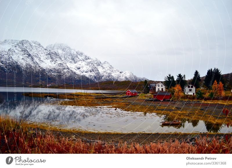 Low tide in the fjord with mountain view and houses on the bank Beautiful Calm Vacation & Travel Tourism Winter Snow Mountain Nature Landscape Plant Sky Tree