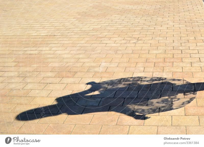 Dancing girl shadow on the bricks Young woman Youth (Young adults) 18 - 30 years Adults Dance dancing background Consistency Surface girls shadow Abstract
