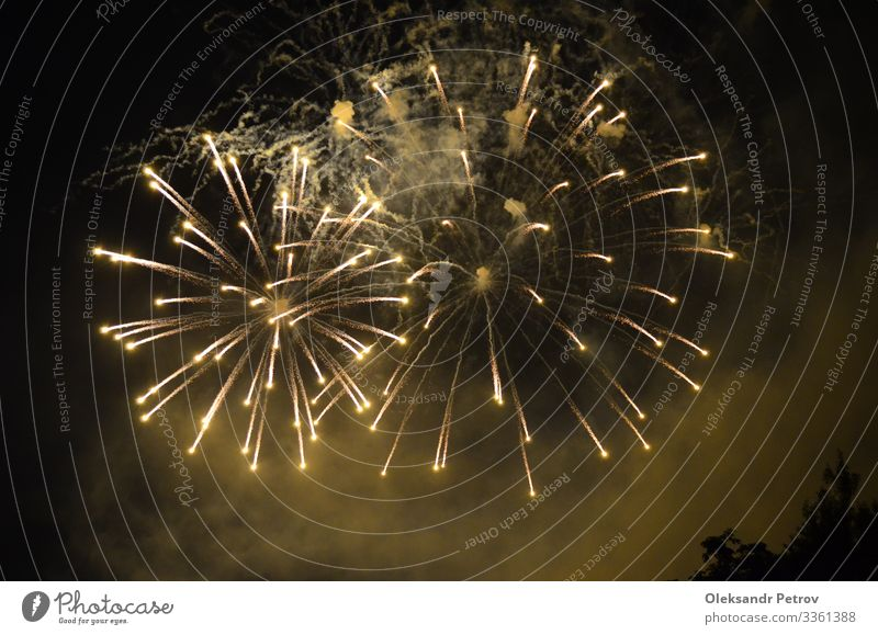White Firework fired in Versailles Happy Beautiful Feasts & Celebrations Dark Black firework holiday party background festival light event Guest Explosion