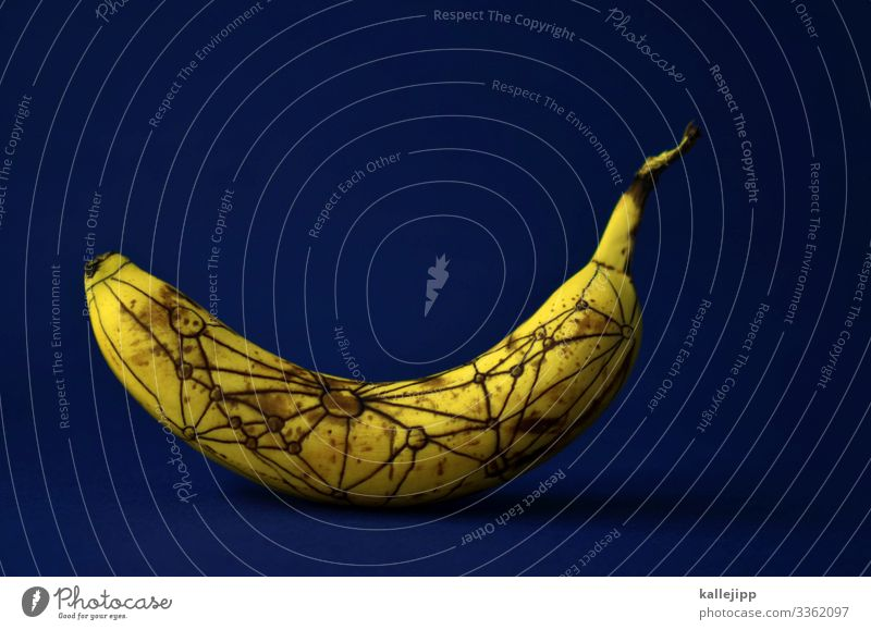 theory of relativity Food Fruit Nutrition Organic produce Vegetarian diet Nature Communicate Science & Research relativity theory Bend Time Banana bananschale
